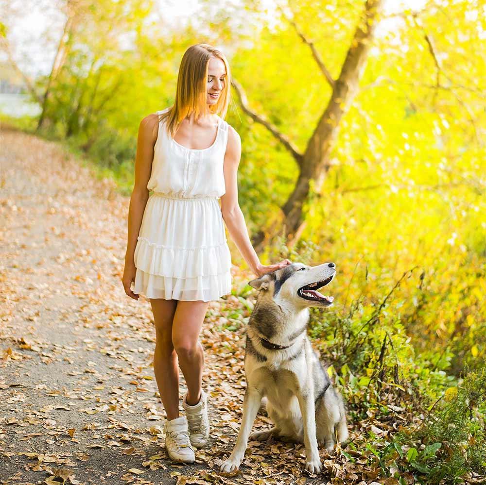 long-dog-walks